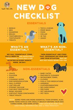 Expecting a new dog soon? Whether you're adopting or bringing home a new puppy, make sure you have everything from this new puppy shopping checklist. New Puppy Checklist, Puppy Schedule, Puppy Training Schedule, Puppies Tips, Dogs And Puppies, Puppy Care, Pet Care, Dog List, Puppy Check List