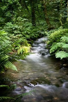 The Stunning Water Stream | Amazing Snapz St. Nectans Glen- Cornwall