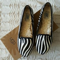 ❌Lowest Price❌UGG shoes Authentic UGG Alloway Exotic zebra ballerina flats. Excellent condition. Never worn. Authenticity certificate included. New in box. Listed at lowest price. Will not take offers lower than listed price, sorry! UGG Shoes Flats & Loafers