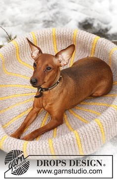 Knitted Dog Bed: free pattern