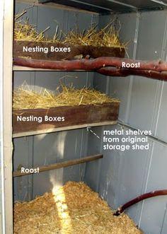 hen house interiors