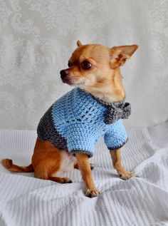 Hier finden Sie eine Anleitung für Anfänger, mit der Sie einen warmen Hundepullover stricken und noch kreative DIY Ideen!
