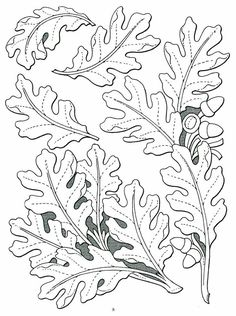 Stohlmans patterns and doodle pages Leather Carving, Leather Tooling, Leather Tutorial, Leather Working Patterns, Doodle Pages, Wood Carving Designs, Leather Stamps, Wood Burning Patterns, Oak Leaves