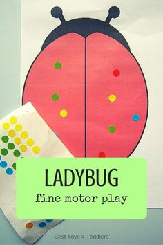 Best Toys 4 Toddlers - Ladybug fine motor play and counting practice for toddlers and preschoolers