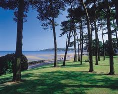 Swansea Bay and the beautiful seaside cycle path.  Amazing. Want to live there again!