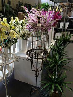 Belo Horizonte - MG : Nature Flores, onde você faz bons negócios!