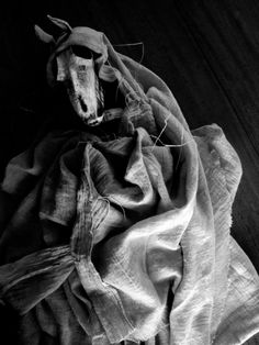Mari Lwyd puppet by Clive Hicks-Jenkins. Clive Hicks-Jenkins' Artlog: | views from the artist's studio.