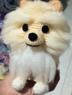 Mini Pomeranian