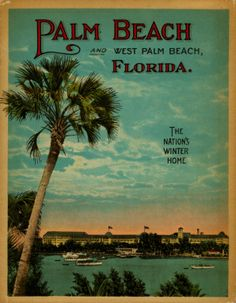 Palm Beach Florida : The Nation's Winter Home Florida City, Palm Beach Florida, Moving To Florida, Palm Beach County, Old Florida, Vintage Florida, Florida Travel, West Palm Beach, South Florida