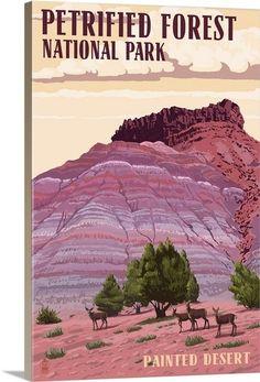 Petrified Forest National Park, Arizona: Painted Desert
