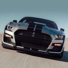 New Mustang shelby GT590