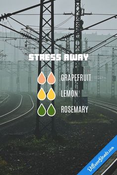 Stress Away - Essential Oil Diffuser Blend