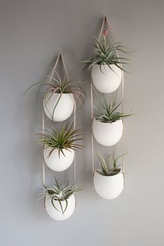 Would love something like this in my kitchen with herbs...String of 3 porcelain containers that hangs on your wall.  Use it as storage for pencils or notions or use it as a planter.  Perfect for air plants or an herb garden.