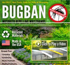 Protect yourself from those pesky mosquitoes. Mosquitoes, Recycled Materials, Recycling, Medical, Plants, Summer, How To Make, Kids, Medical Doctor