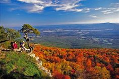 Mount Magazine Fall Color #Arkansas