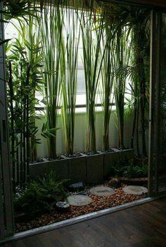 Bamboo in cinder blocks