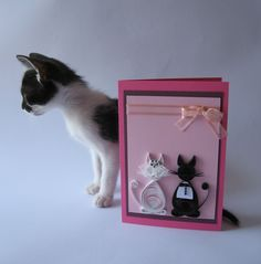 Quilled wedding card with kittens and my cat