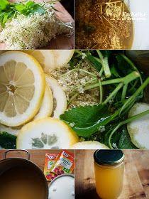 ŽELÉ Z KVĚTŮ ČERNÉHO BEZU • 20 květenství černého bezu a 10 snítek meduňky. Byliny rozdělíme na dvě poloviny, jednu svaříme s 1 litrem vody, necháme vychladnout a přidáme druhou polovinu bylin a jeden citrón (na kolečka). Zakryjeme a necháme v chladu odležet 24 - 48 h. Byliny i citróny rukou dobře vymačkáme, přecedíme, vsypeme 2 sáčky želírovacího prostředku Gelfix Extra rozmíchaného se třemi lžícemi cukru, rozšleháme metličkou, přivedeme k varu a za stálého míchání minutu zprudka povaříme...... Thing 1, Seaweed Salad, Fresh Rolls, Sprouts, Homemade, Vegetables, Ethnic Recipes, Food, Russian Recipes