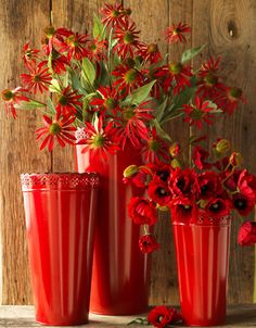 Loved the Paris theme today ♥ thank you. NEXT, let's do Ana Rosa in RED. Red Flowers, Pretty Flowers, Gerbera, Vase Rouge, I See Red, Red Vases, Red Cottage, Simply Red, Red Aesthetic