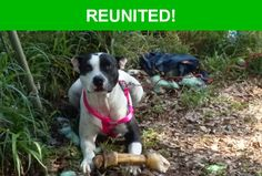 Great news! Happy to report that Bonnie has been reunited and is now home safe and sound! :)