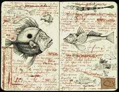 Fishes | julia_julia.f | Flickr