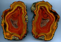 Condor-Agate (location Arenas) | Flickr - Photo Sharing!
