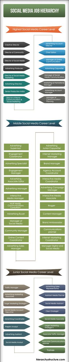 Social Media Job Hierarchy