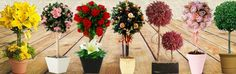El Sofitel Bogotá Victoria Regia ofrecerá un taller para descubrir el fantástico arte de cuidar y diseñar preciosos arreglos florales