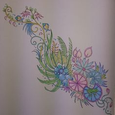#MagicalJungle #JohannaBasford #MyCreativeEscape #JohannaBasfordMagicalJungle #AdultColouring #AdultColoring #Complete