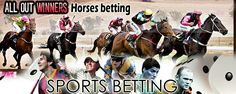Use horse racing betting tips if you want to earn cash. If youre a beginner to this game, you should play safe or you will risk losing everything.