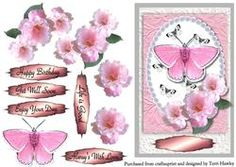 Pink Roses And Butterfly