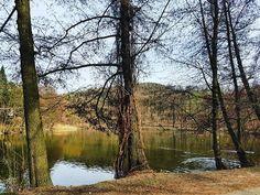 První cyklo výlet po zimě... #cyklovylet #cyklotrip #kunratickyles #spring #wood #pond