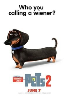 Assistir Pets A Vida Secreta Dos Bichos 2 Assistir Filme Filme