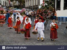 Dh Flower Festival Funchal Madeira Childrens Parade To The Wall Of Stock Photo, Royalty Free Image: 17861374 - Alamy