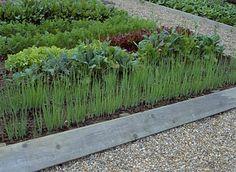 Most készítsünk magaságyat! - Komposzt és talaj - Kertépítés + Kerttervezés Gardening Tips, Veggies, Plants, Vegetable Recipes, Vegetables, Plant, Planets