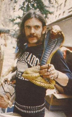Look out snake! There's a Lemmy behind you!!