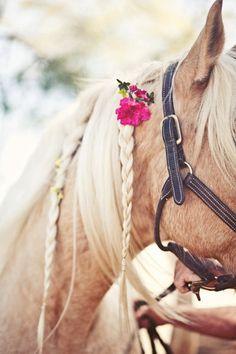 Braids in horse mane with pink flower