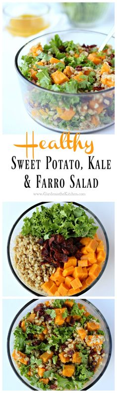 Vegan, Gluten-free (V + GF) Sweet Potato, Kale and Ferro Salad with Citrus Vinaigrette makes for a delicious and healthy salad for a weeknight meal | gardeninthekitchen.com