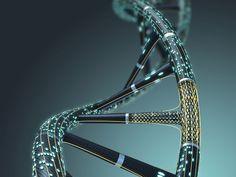 ヒト細胞のDNAに「記憶」を記録することが可能に | TechCrunch Japan