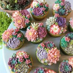 Succulents — They Look Like Out Of A Fairytale -Rose Succulents — They Look Like Out Of A Fairytale - The making of : succulent dessert garden by Bijou's Sweet Treats wedding cake studio. Cupcakes Flores, Floral Cupcakes, Cupcake Bouquet Diy, Pretty Cakes, Beautiful Cakes, Amazing Cakes, Succulent Cupcakes, Succulent Pots, Succulents Garden