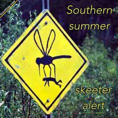 Southern Summer Skeeter Alert,  Click the link to view today's funniest pictures!