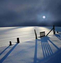 Peaceful Moon shadows on the Pristine Snow
