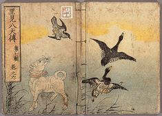 'Hakkenden', illustrated by Yanagawa Shigenobu