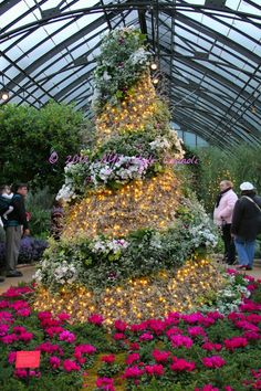 NYC, Style and a little Cannoli: A Trip to Longwood Gardens at Christmas