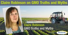 "Know more about genetically engineered foods and genetically modified organisms from the book ""GMO Myths and Truths."" http://articles.mercola.com/sites/articles/archive/2016/04/24/gmo-myth-truth.aspx"