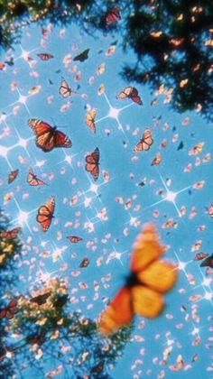 Iphone Wallpaper Tumblr Aesthetic, Aesthetic Pastel Wallpaper, Aesthetic Wallpapers, Butterfly Wallpaper Iphone, Iphone Background Wallpaper, Beauty Iphone Wallpaper, Iphone Wallpaper Glitter, Trippy Wallpaper, Retro Wallpaper