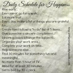 Daily Schedule for Happiness - 2014