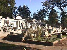 Como es el dia de los muertos los ninos van a ir al cementerio porque va a ver mucha gente.