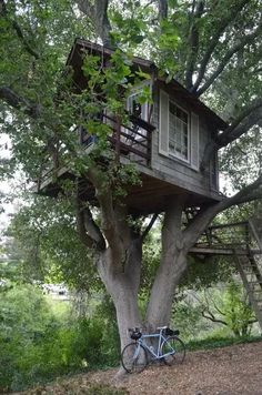 Check out this awesome listing on Airbnb: Tree house Above San Francisco Bay! - Treehouses for Rent in Burlingame Beautiful Tree Houses, Cool Tree Houses, Garden Architecture, Architecture Details, Interior Architecture, Tiny Build, Octagon Picnic Table, Treehouse Living, Zelt Camping