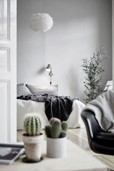 Tiny plants and cacti lend a pop of color to any minimalist room.